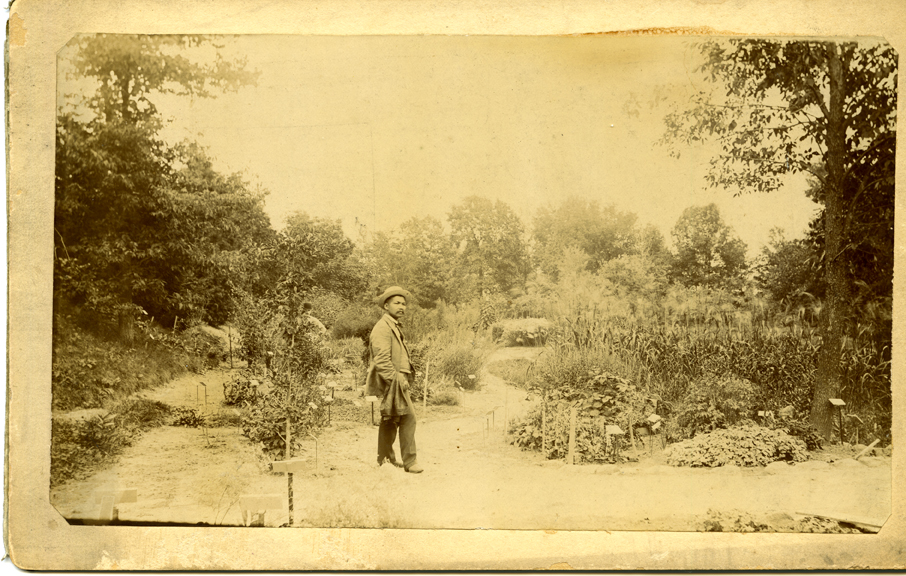 Koli Sau Thabue in garden