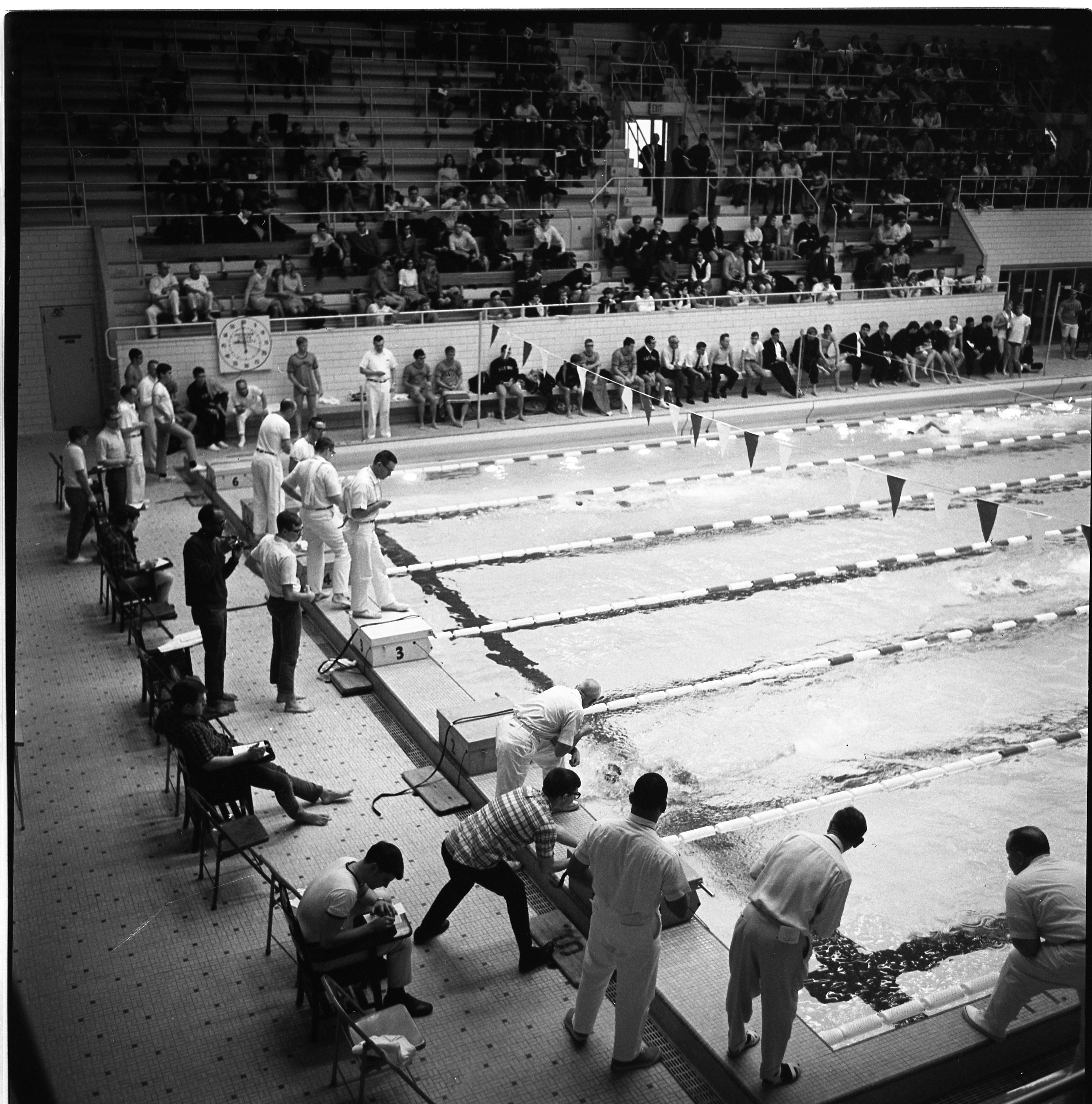 MSU vs. ILL vs. Ohio Swim Meet Action Shot
