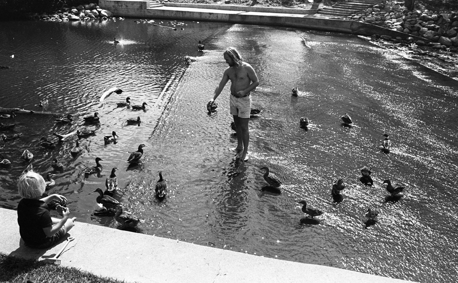 Students feeding ducks behind the Administration Building