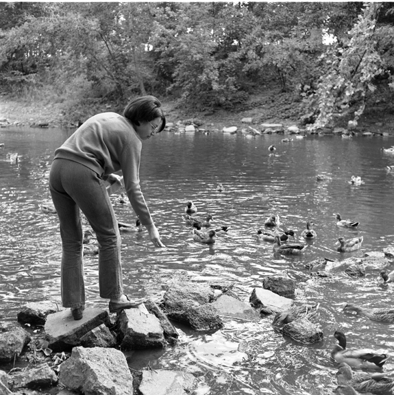 Woman feeds ducks on the Red Cedar River