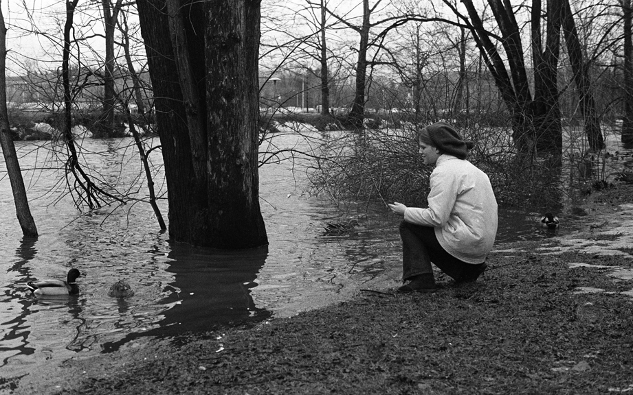 Woman crouching by Red Cedar River to feed the ducks