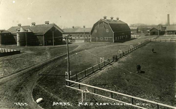 M.A.C. farm buildings