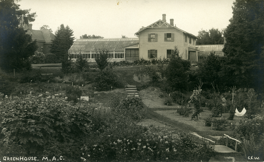 Greenhouse and garden