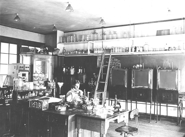 At Work in the Bacteriology Lab, 1905