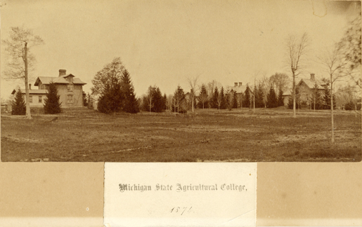 Faculty Row, 1874