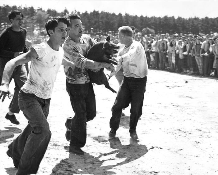 A student carries a pig during class rivalries, 1948