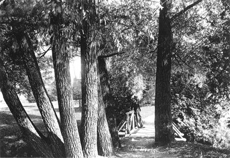 Footbridge across the Willows, 1896-1897