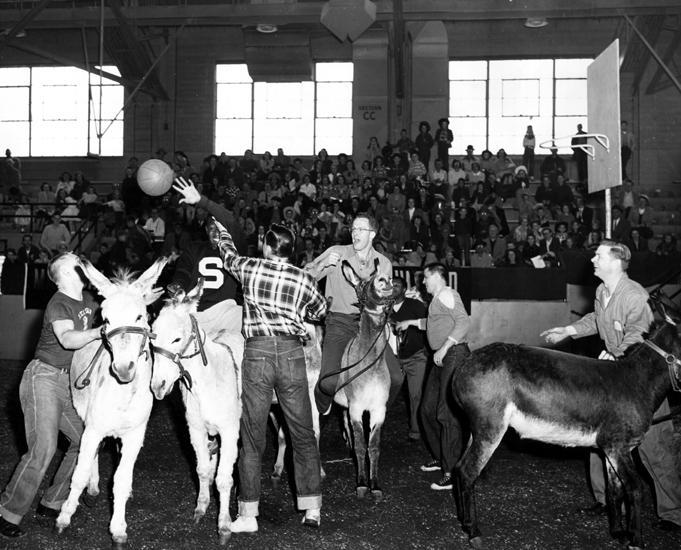 Donkey Basketball, 1953