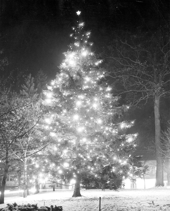 Christmas Tree in Front of the Union