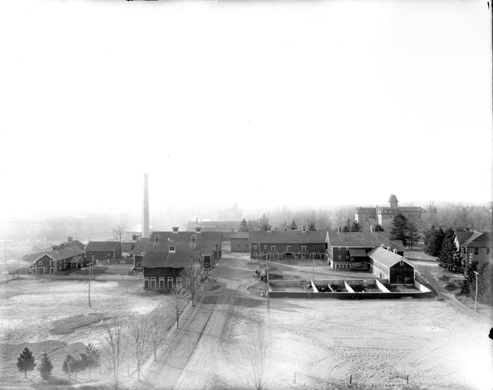 Campus buildings around the smokestack, 1906