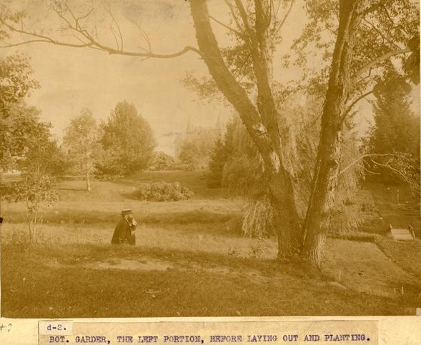 Beal Botanical Garden before planting, circa 1875