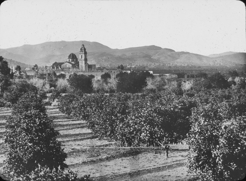 Spanish orchard with town in the background, undated