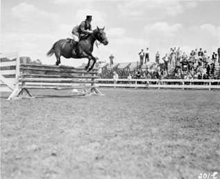 A man and horse jumping in front of spectators