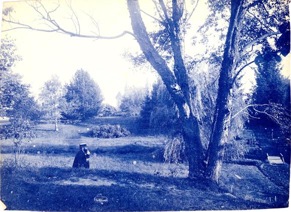 Beal Botanical Garden, circa 1875