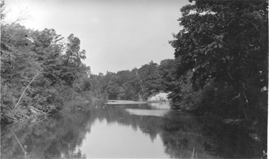 Dunbar Forestry station, date unknown
