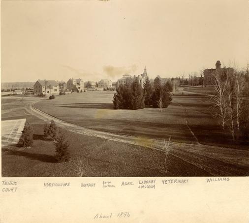 Campus panorama, 1896
