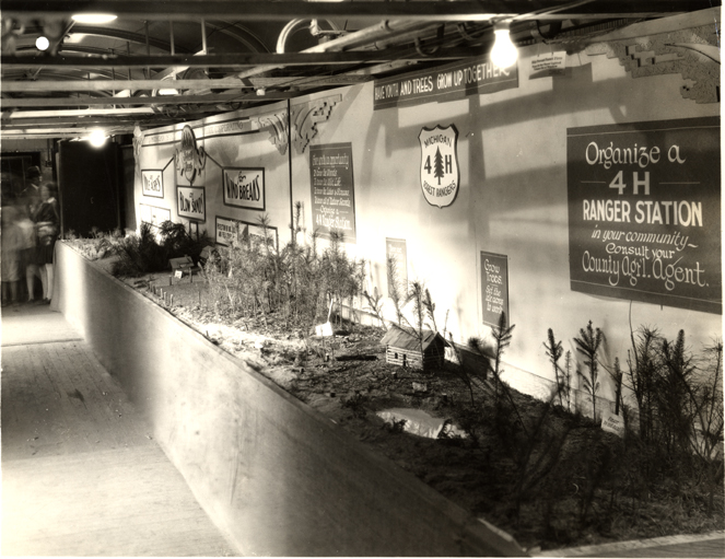Forestry exhibit, date unknown.