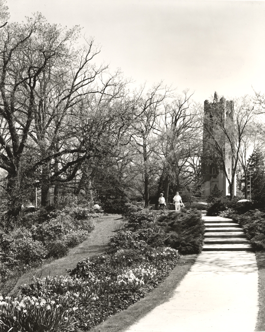 View of Beaumont Tower from the Botanical Gardens, date unknown