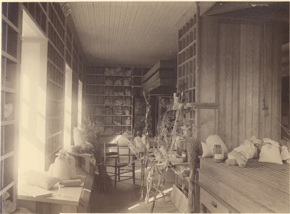 Experiment station seed room, date unknown