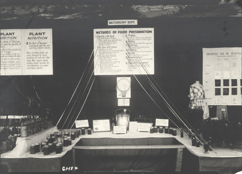 Bacteriology Department exhibit, date unknown