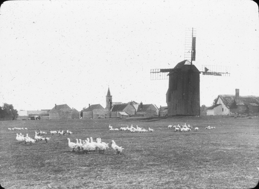 Scene of windmill with geese and town in Austria, undated