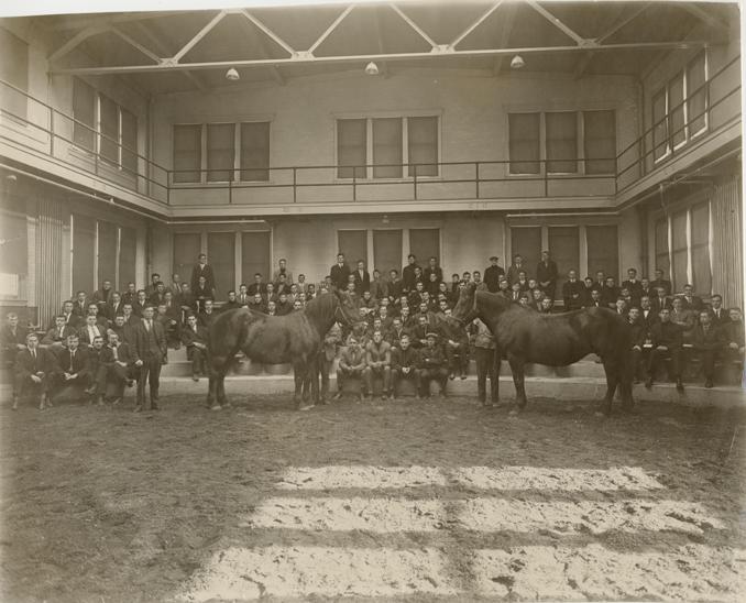 An animal husbandry class observes two horses, 1912