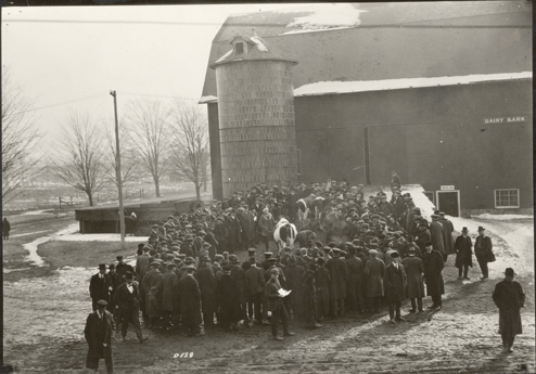 Men gather around cows outside the Dairy Barn, date unknown