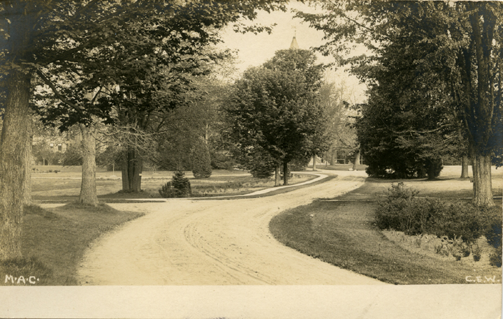 A campus road, date unknown