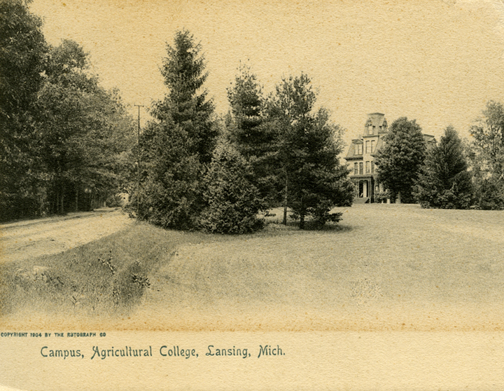 A view of campus, 1904