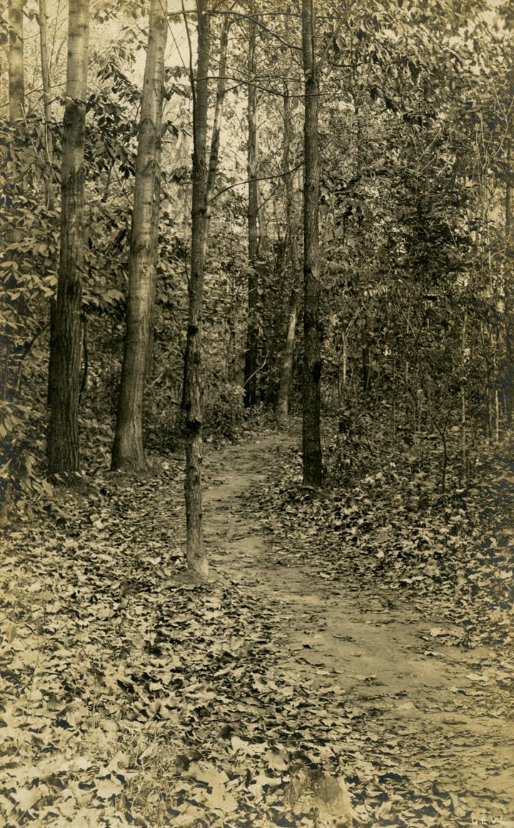 Arboretum, date unknown