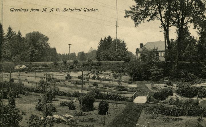 Beal Botanical Garden, date unknown