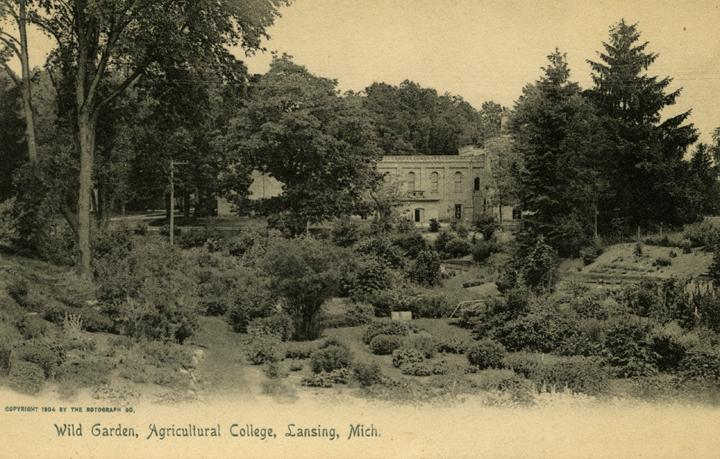 Beal Botanical Garden, 1904