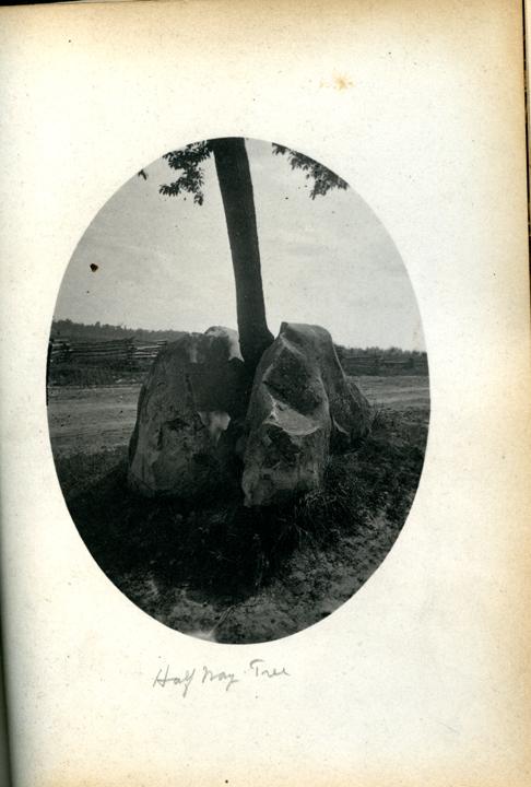 M.A.C. Half-Way Tree, 1886