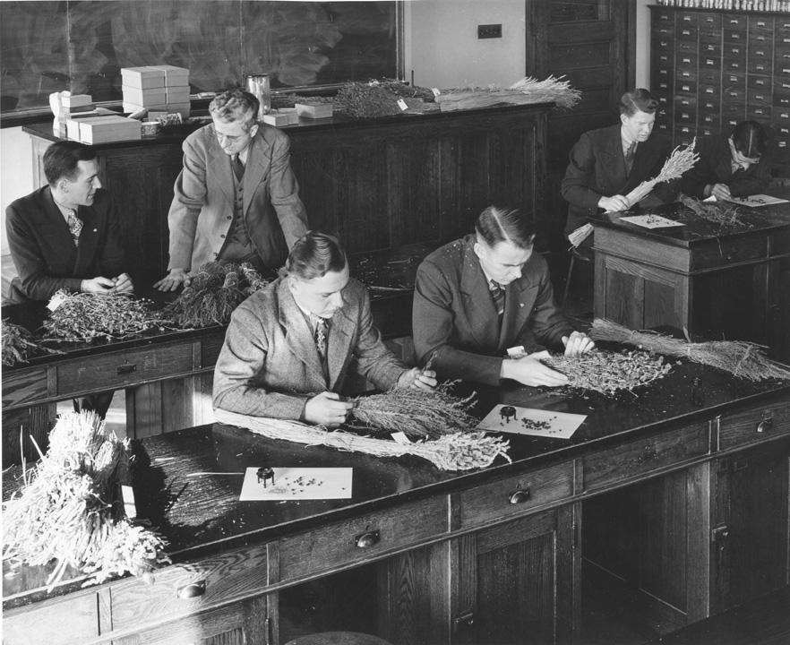 Crop Class, 1946