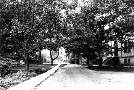 Copy of a photograph looking east at campus from the viaduct, 1895