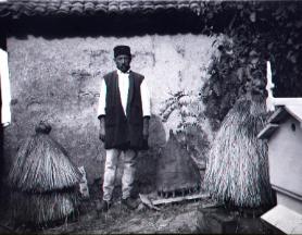 Man tending beehives, date unknown
