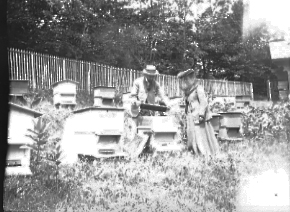 Man and woman with beehives, date unknown