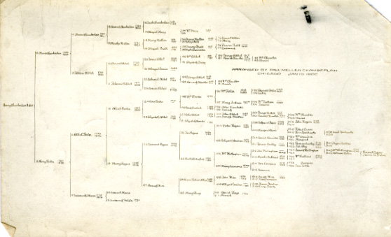Family Tree of Henry Chamberlain, 1900