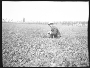 Man standing in a field (Frank M. Benton papers), circa 1880s