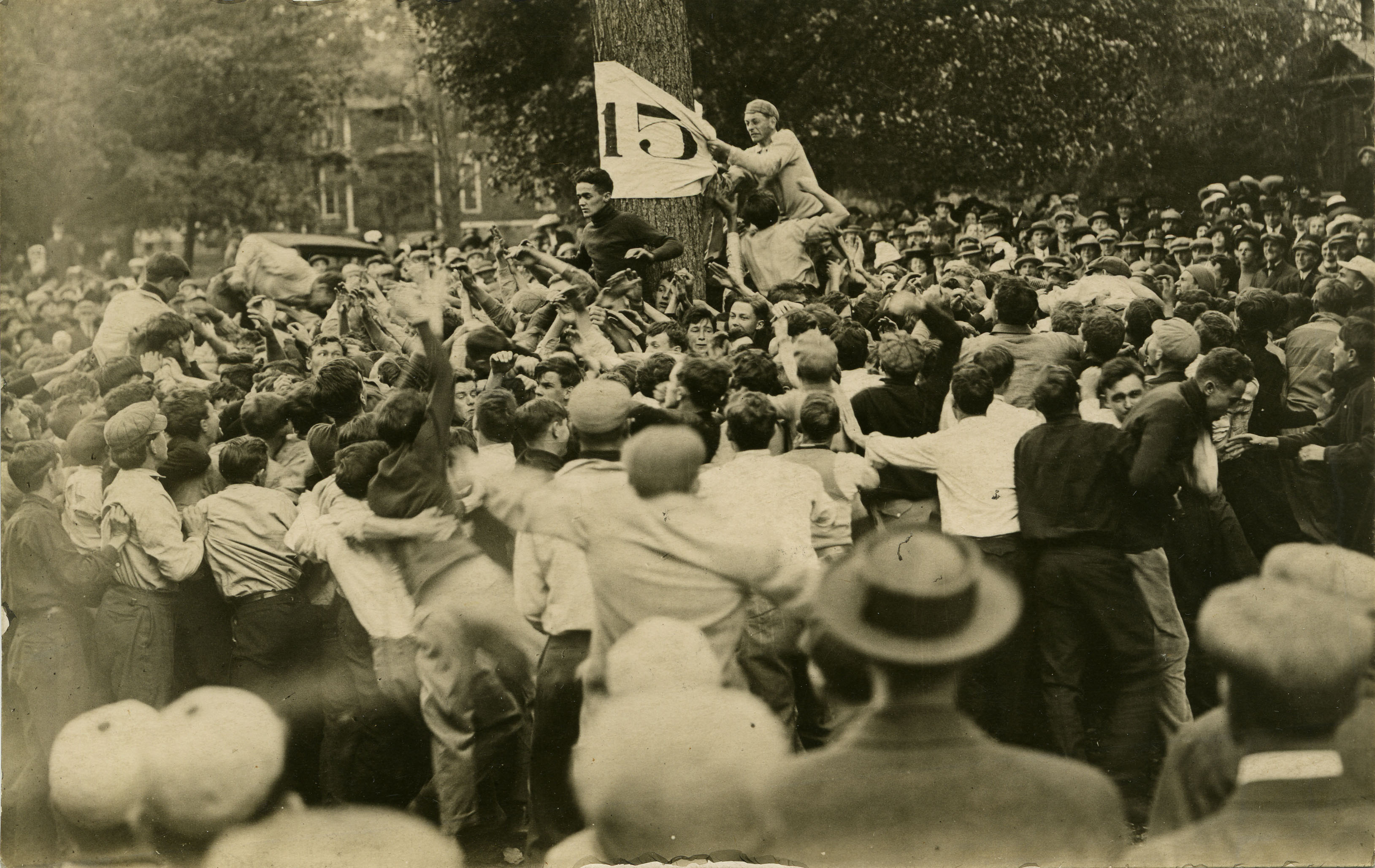 "Freshman tears a ""flag"" from a tree during Class Rivalry, circa 1916"