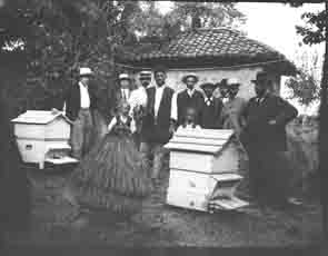 Group standing next to bee hive boxes (Frank M. Benton papers), circa 1880s