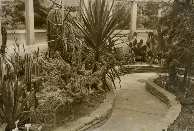 Arid Dome, Conservatory, Hidden Lake Gardens, 1969