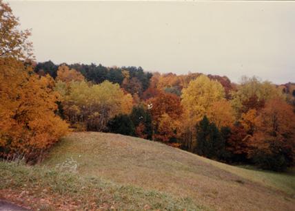 Autumn scene at Hidden Lake Gardens, 1987