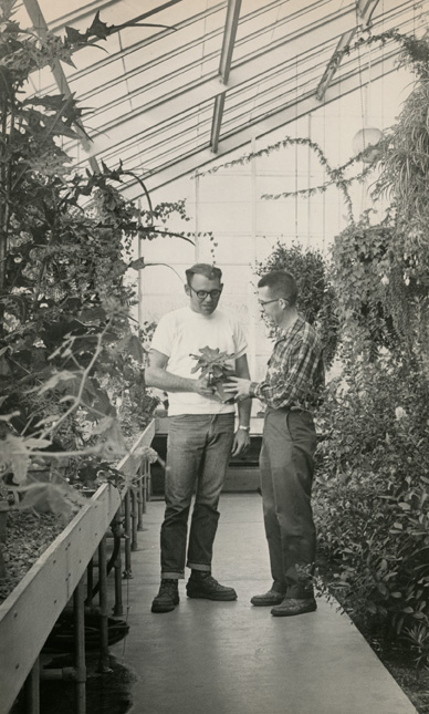 Hidden Lake Garden employees inspect potted plants, 1969