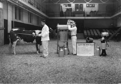 """Farmers Week 1928: """"Why Use More Milk"""" demonstration with cow"""