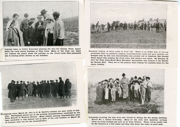 Wexford County Report Newspaper Clippings, 1916