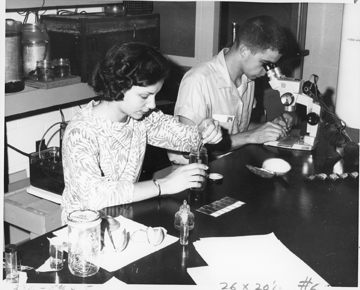 Students in Lab at Kellogg Biological Station, 1959