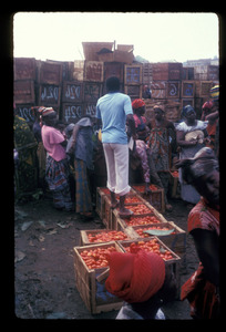 Young man standing on tomato boxes