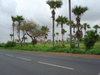 Photo of Ndiassane road signs 2