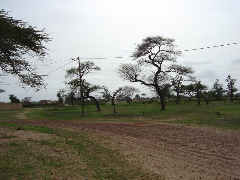 Photo of Ndankh landscape